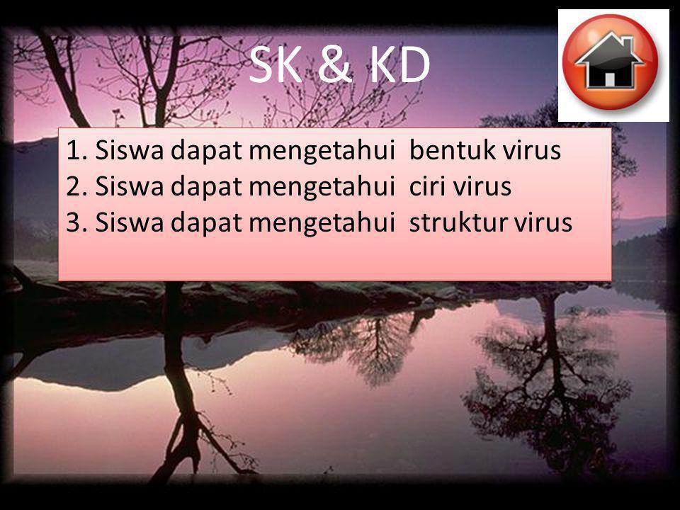 SK & KD 1. Siswa dapat mengetahui bentuk virus