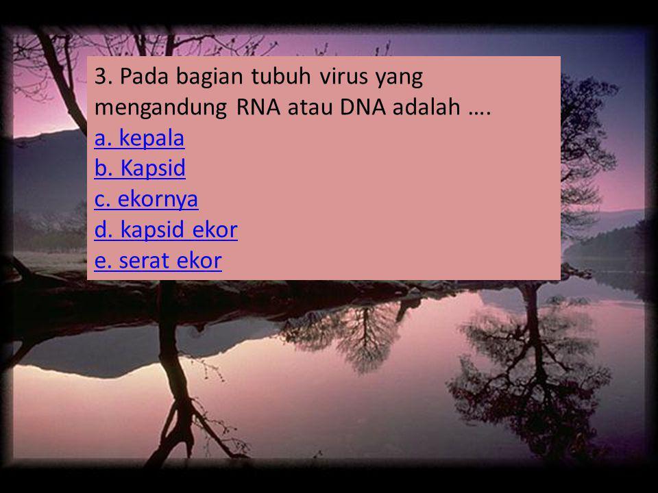 3. Pada bagian tubuh virus yang mengandung RNA atau DNA adalah ….