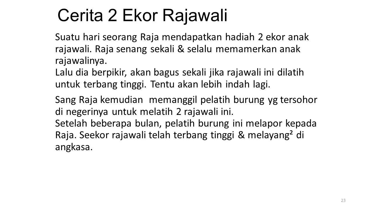 Cerita 2 Ekor Rajawali