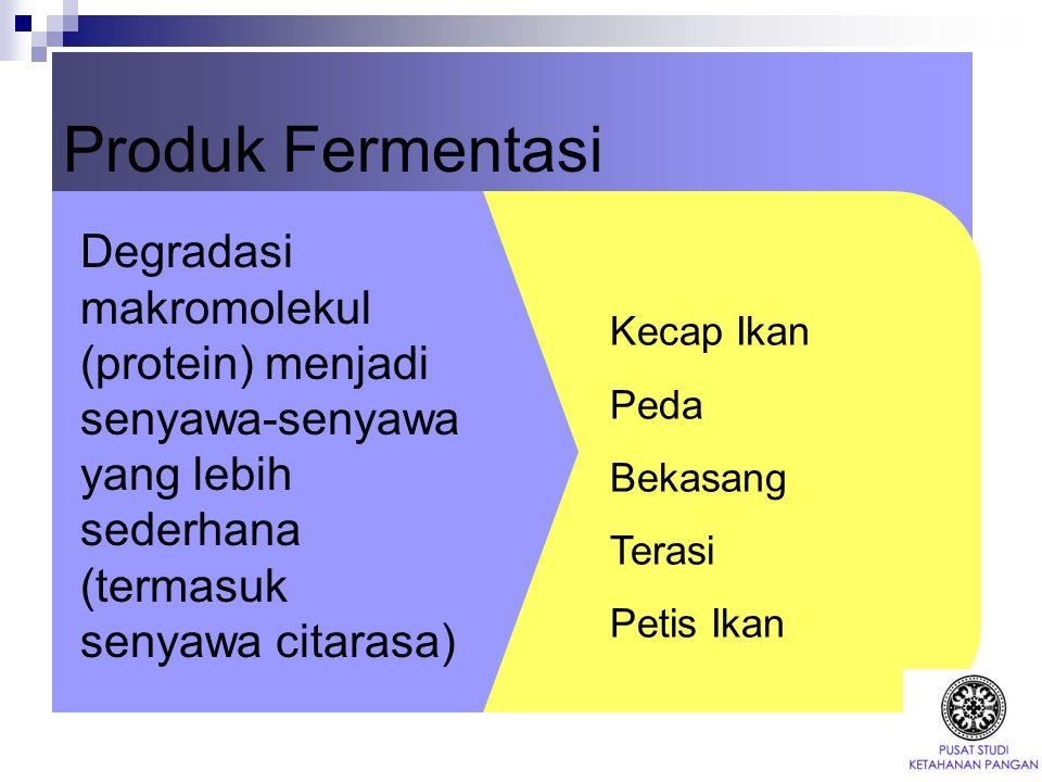 Produk Fermentasi Degradasi makromolekul (protein) menjadi senyawa-senyawa yang lebih sederhana (termasuk senyawa citarasa)