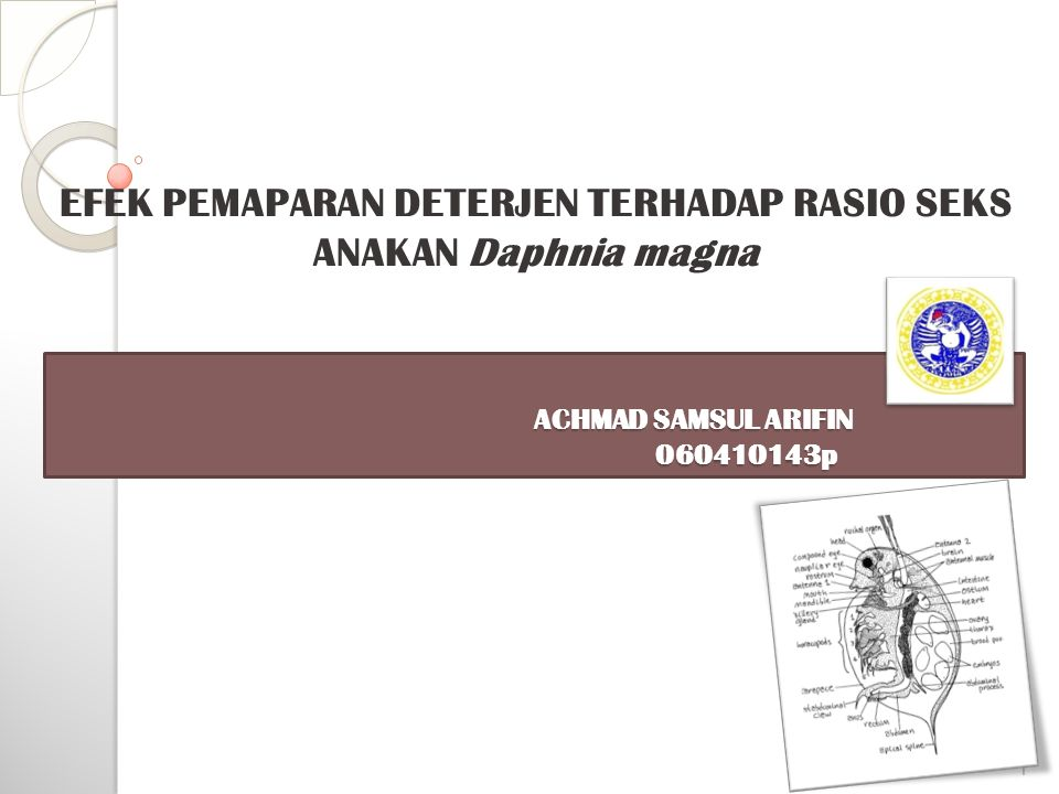 EFEK PEMAPARAN DETERJEN TERHADAP RASIO SEKS ANAKAN Daphnia magna
