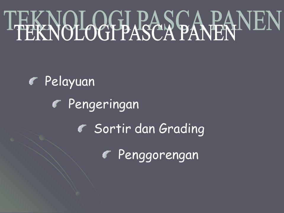 TEKNOLOGI PASCA PANEN Pelayuan Pengeringan Sortir dan Grading