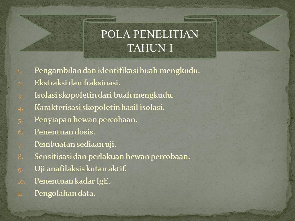 POLA PENELITIAN TAHUN I
