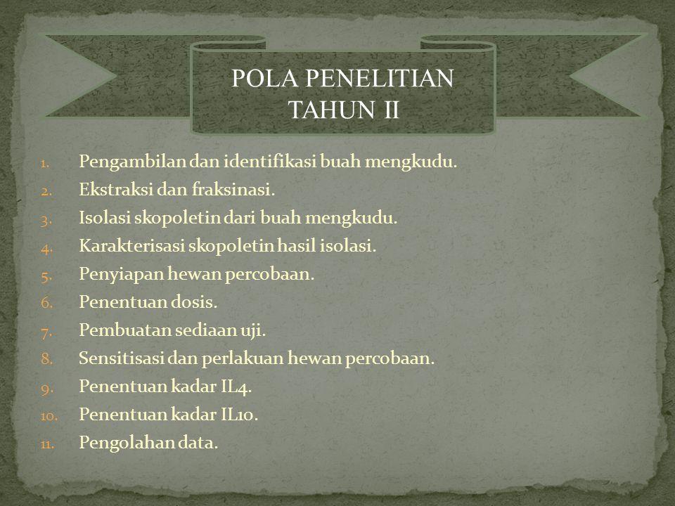 POLA PENELITIAN TAHUN II