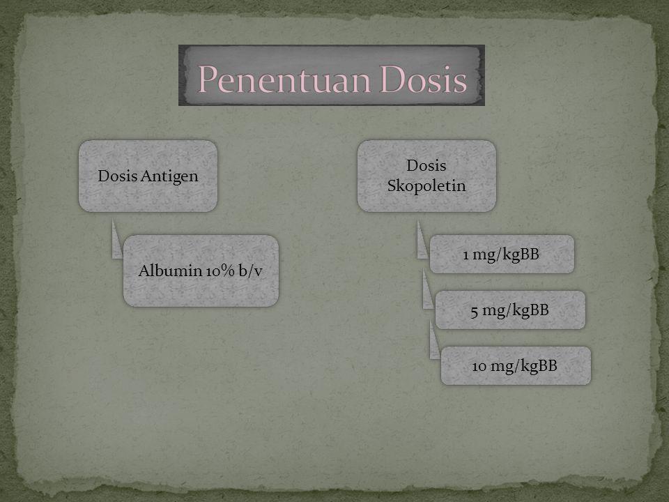 Penentuan Dosis Dosis Skopoletin Dosis Antigen 1 mg/kgBB