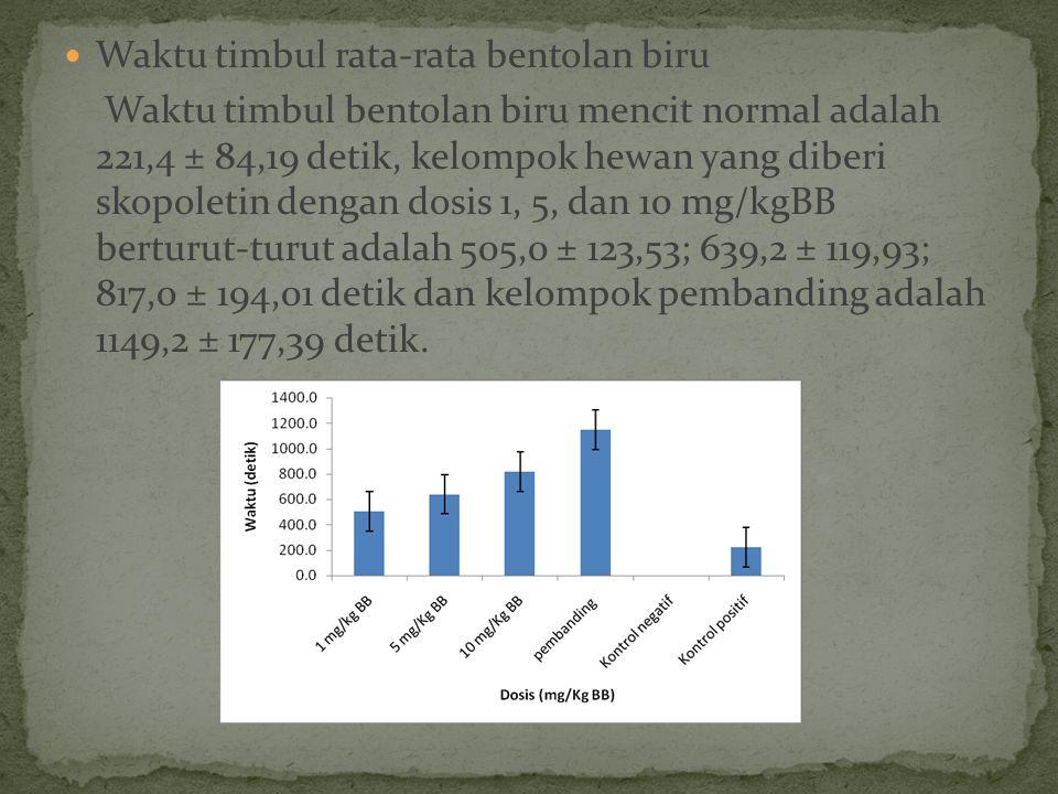 Waktu timbul rata-rata bentolan biru