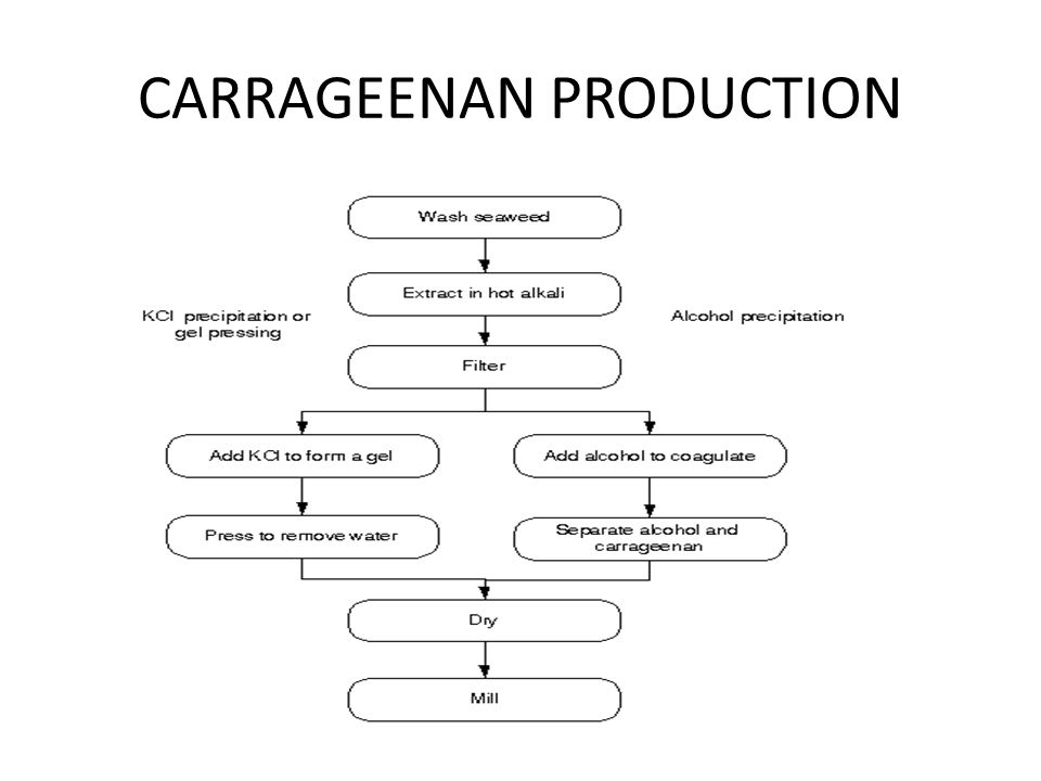 CARRAGEENAN PRODUCTION