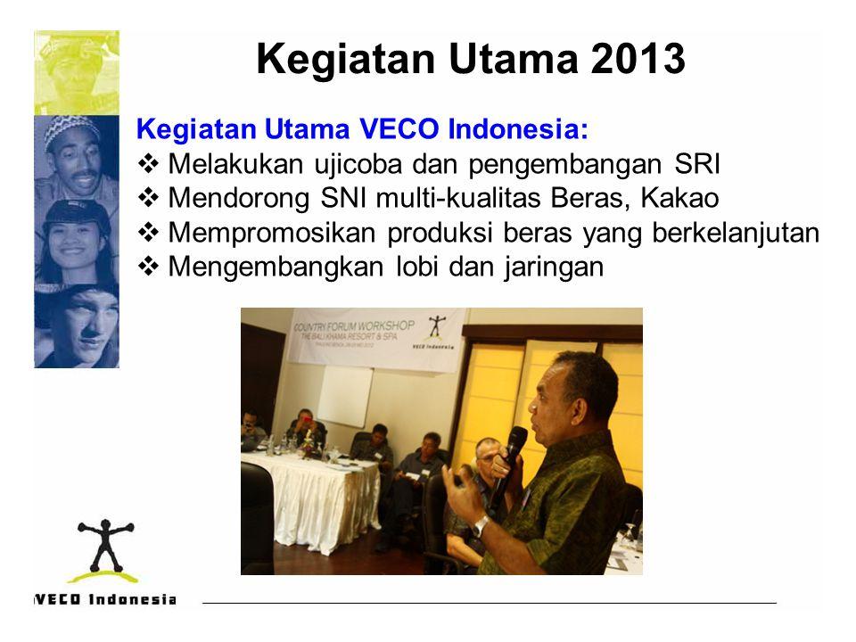 Kegiatan Utama 2013 Kegiatan Utama VECO Indonesia: