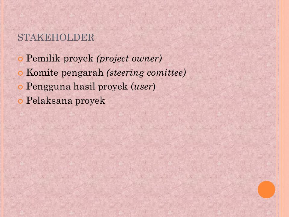 stakeholder Pemilik proyek (project owner)