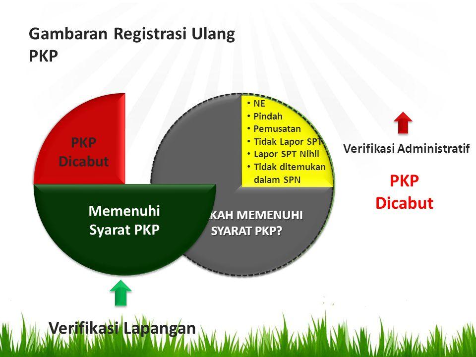 Gambaran Registrasi Ulang PKP