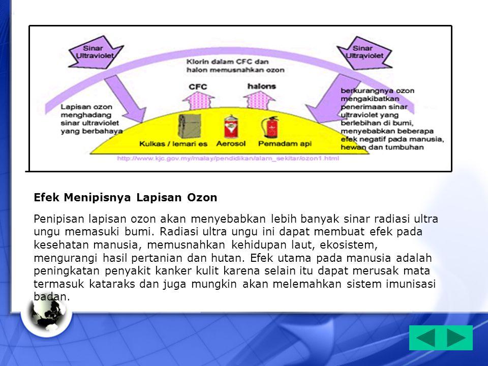 Efek Menipisnya Lapisan Ozon