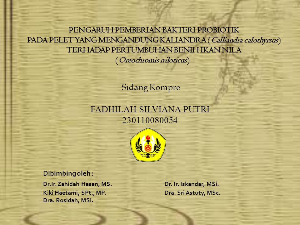 Sidang Kompre FADHILAH SILVIANA PUTRI 230110080054