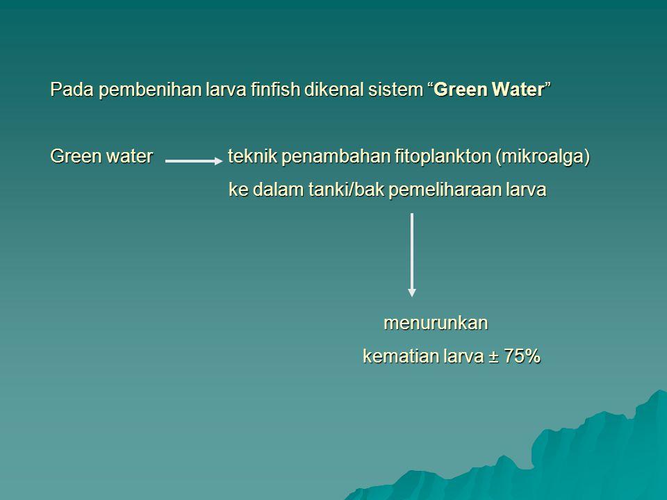 Pada pembenihan larva finfish dikenal sistem Green Water Green water teknik penambahan fitoplankton (mikroalga) ke dalam tanki/bak pemeliharaan larva menurunkan kematian larva ± 75%