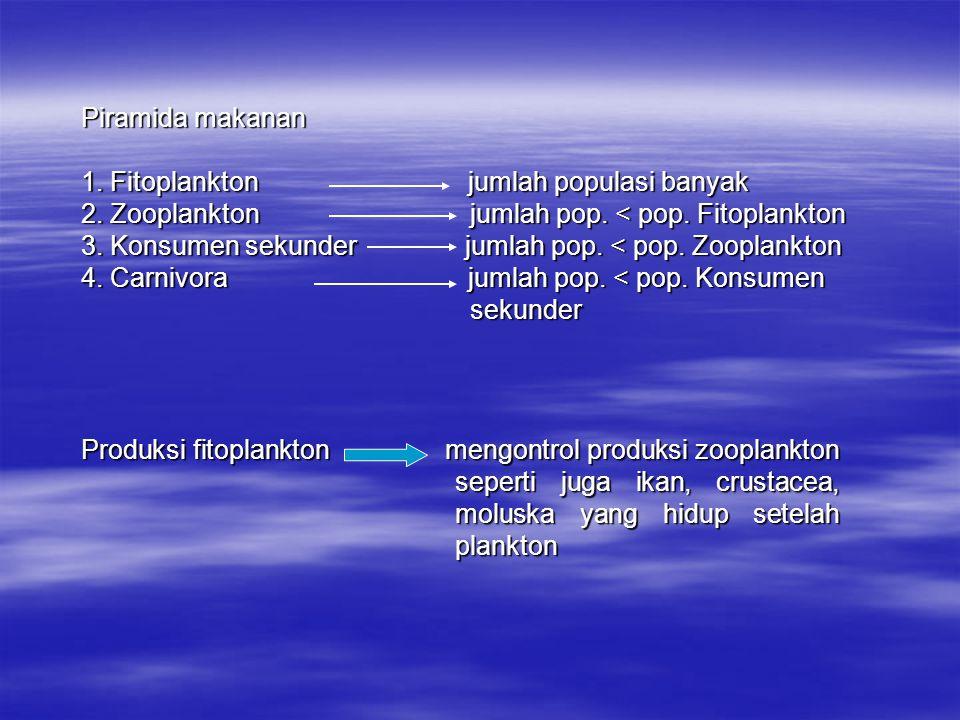 Piramida makanan 1. Fitoplankton jumlah populasi banyak 2