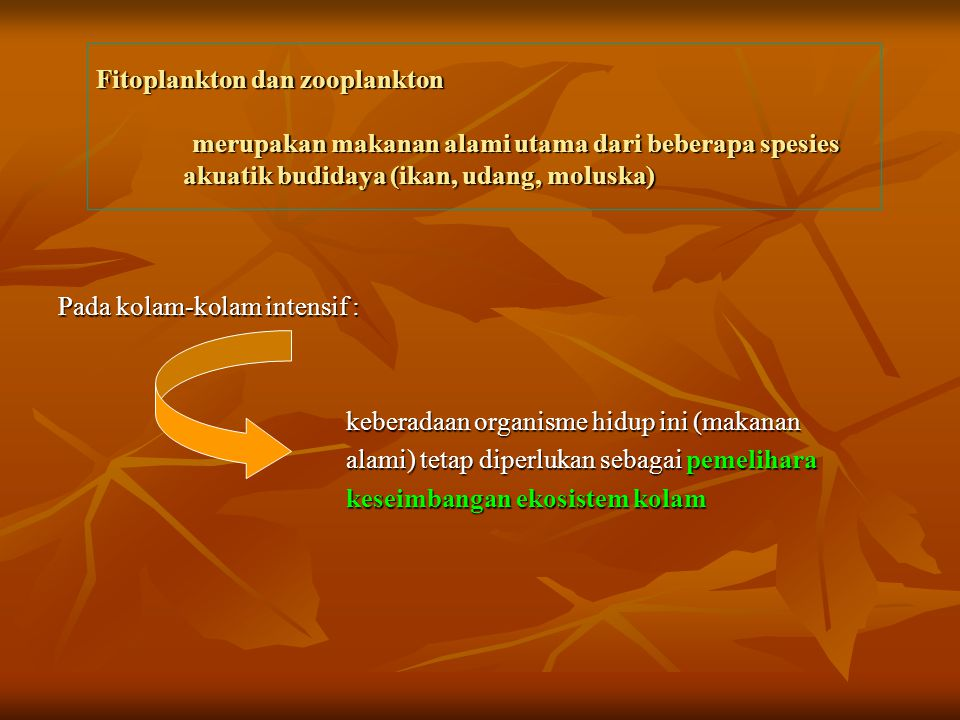 Fitoplankton dan zooplankton