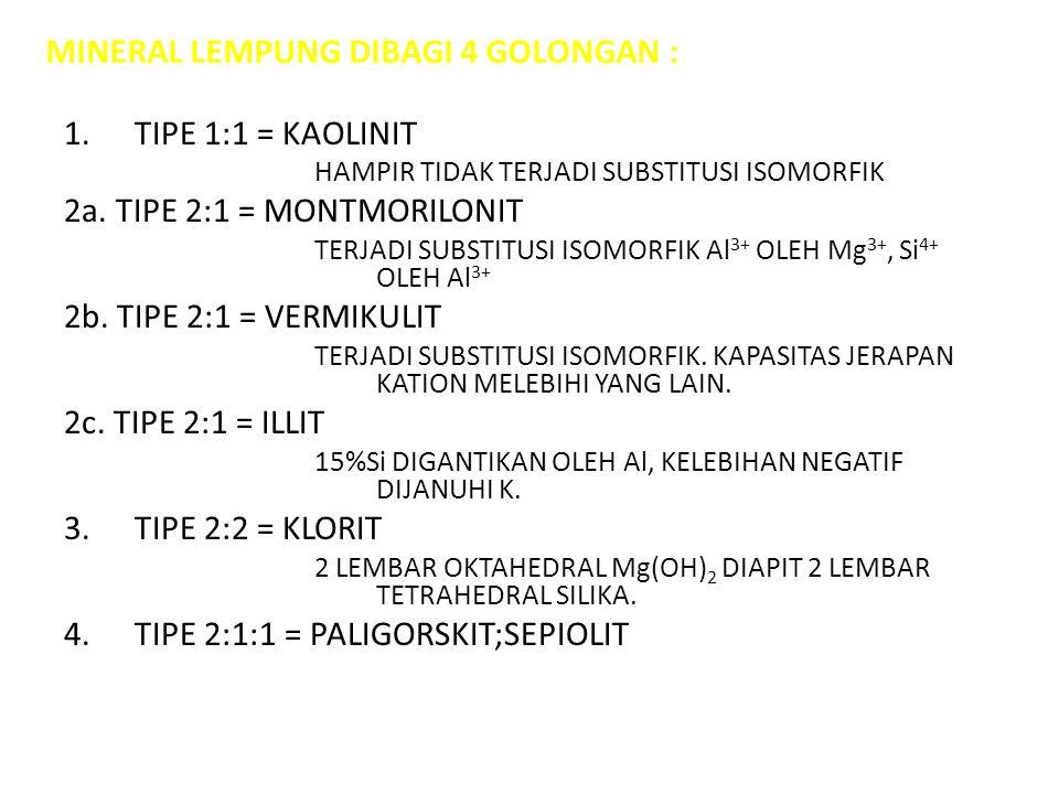 MINERAL LEMPUNG DIBAGI 4 GOLONGAN :