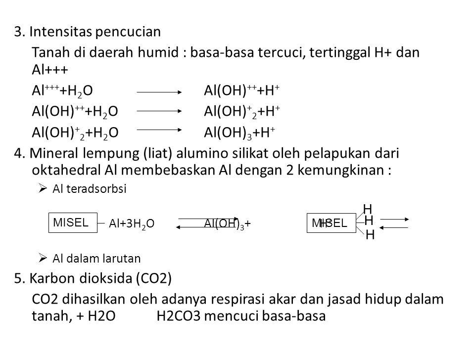 Tanah di daerah humid : basa-basa tercuci, tertinggal H+ dan Al+++