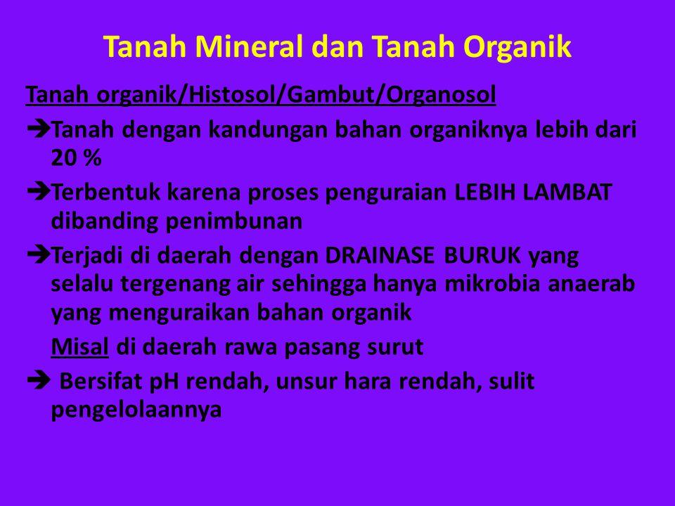 Tanah Mineral dan Tanah Organik
