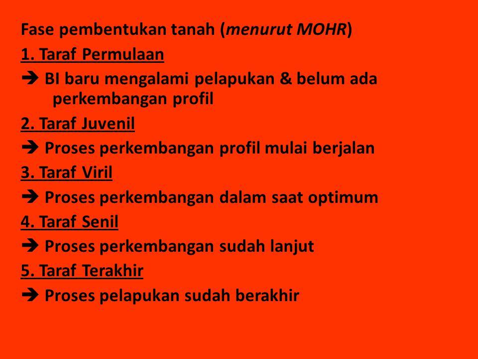 Fase pembentukan tanah (menurut MOHR) 1