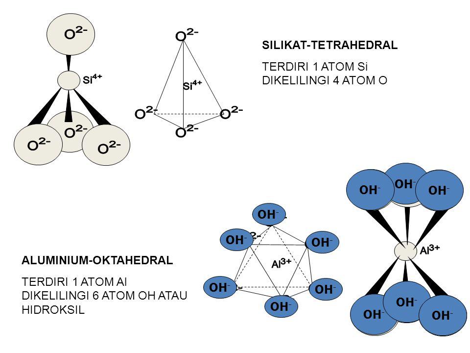 2- 4+ 4+ 2- 2- 3+ 3+ 2- SILIKAT-TETRAHEDRAL