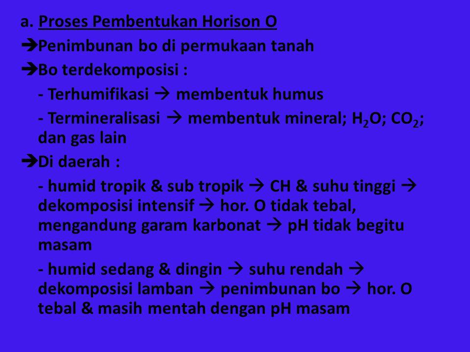 a. Proses Pembentukan Horison O