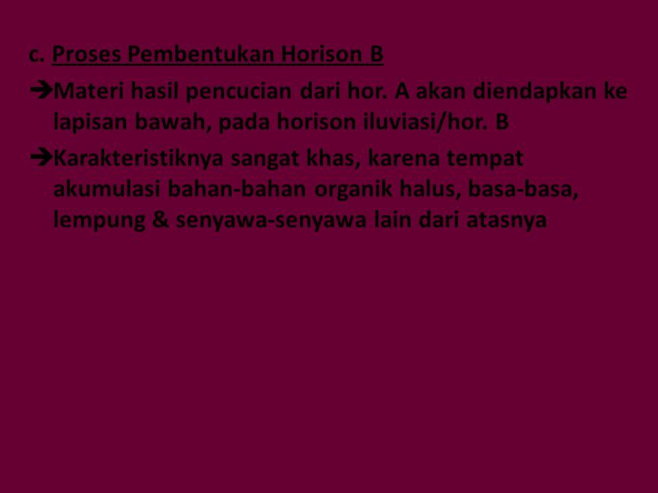 c. Proses Pembentukan Horison B