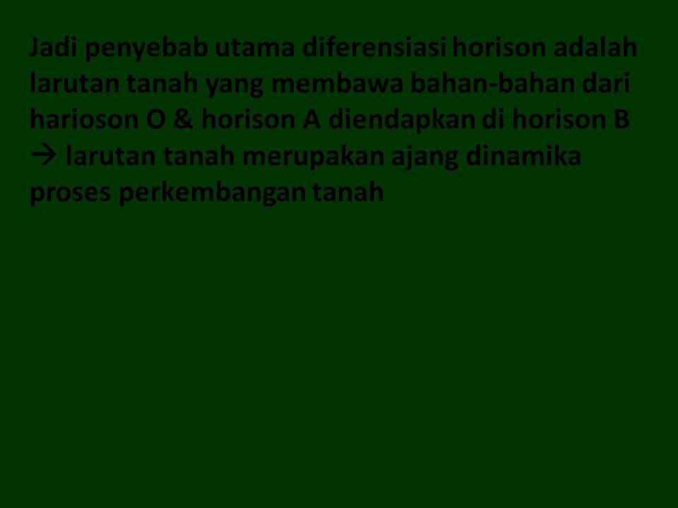 Jadi penyebab utama diferensiasi horison adalah larutan tanah yang membawa bahan-bahan dari harioson O & horison A diendapkan di horison B  larutan tanah merupakan ajang dinamika proses perkembangan tanah