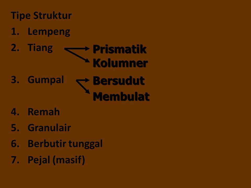 Tipe Struktur Lempeng. Tiang. Gumpal. Remah. Granulair. Berbutir tunggal. Pejal (masif) Prismatik.