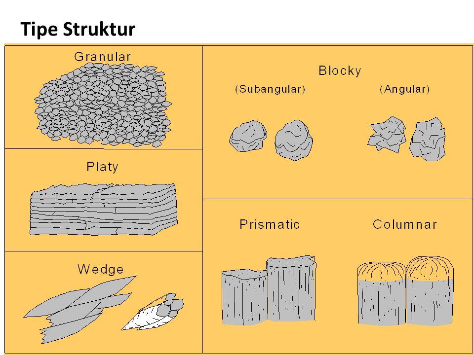 Tipe Struktur