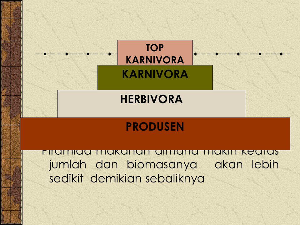 KARNIVORA HERBIVORA PRODUSEN