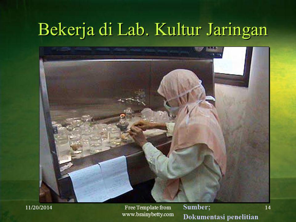 Bekerja di Lab. Kultur Jaringan