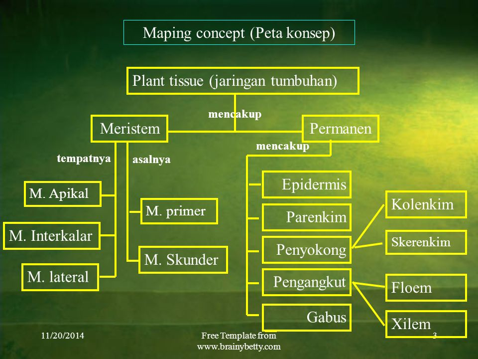 Maping concept (Peta konsep)