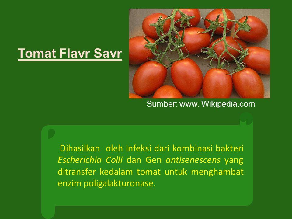 Tomat Flavr Savr Sumber: www. Wikipedia.com.