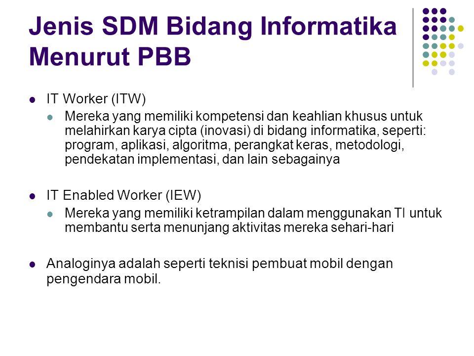 Jenis SDM Bidang Informatika Menurut PBB