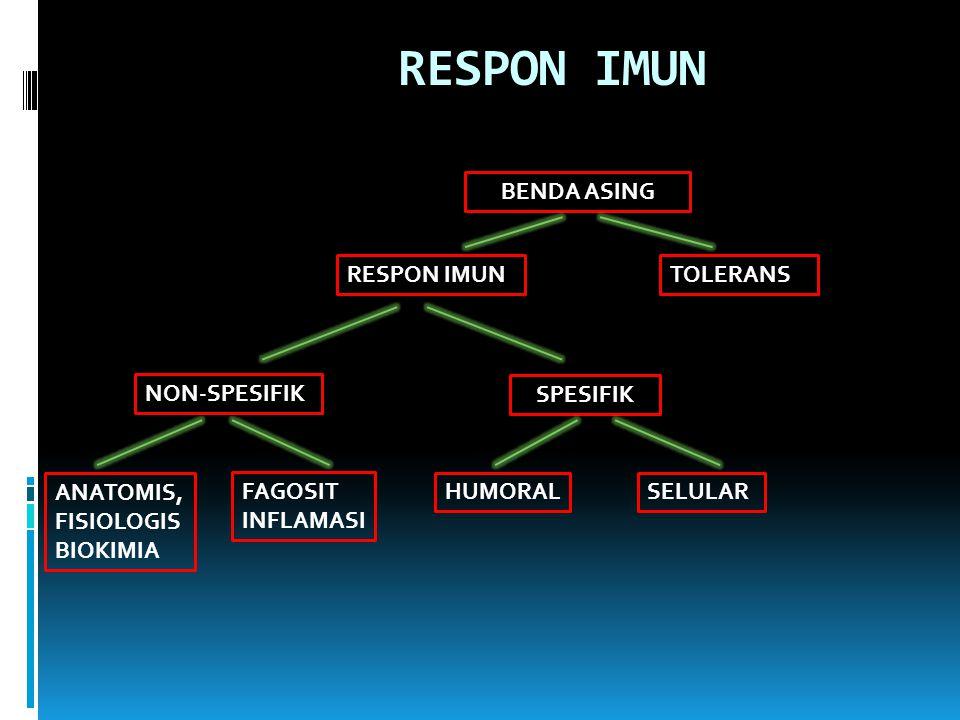 RESPON IMUN BENDA ASING RESPON IMUN TOLERANS NON-SPESIFIK SPESIFIK
