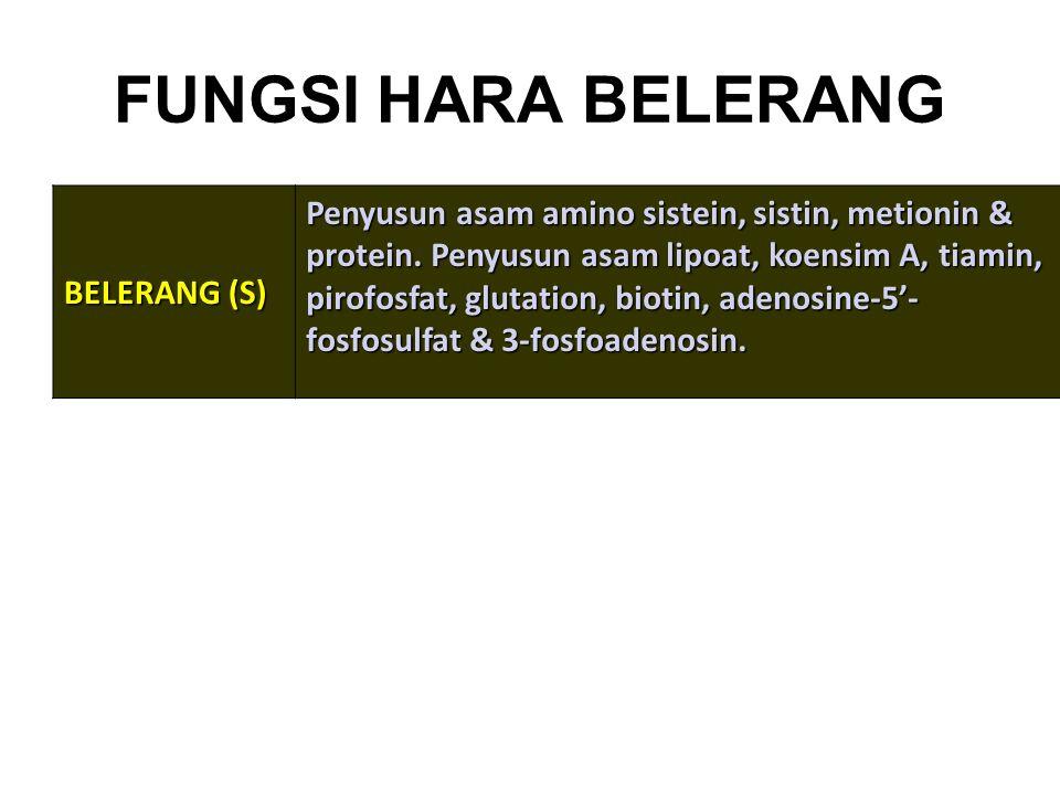 FUNGSI HARA BELERANG BELERANG (S)