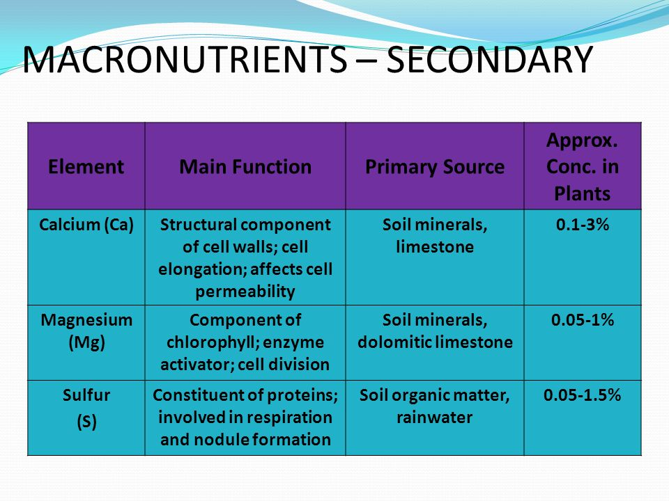 MACRONUTRIENTS – SECONDARY