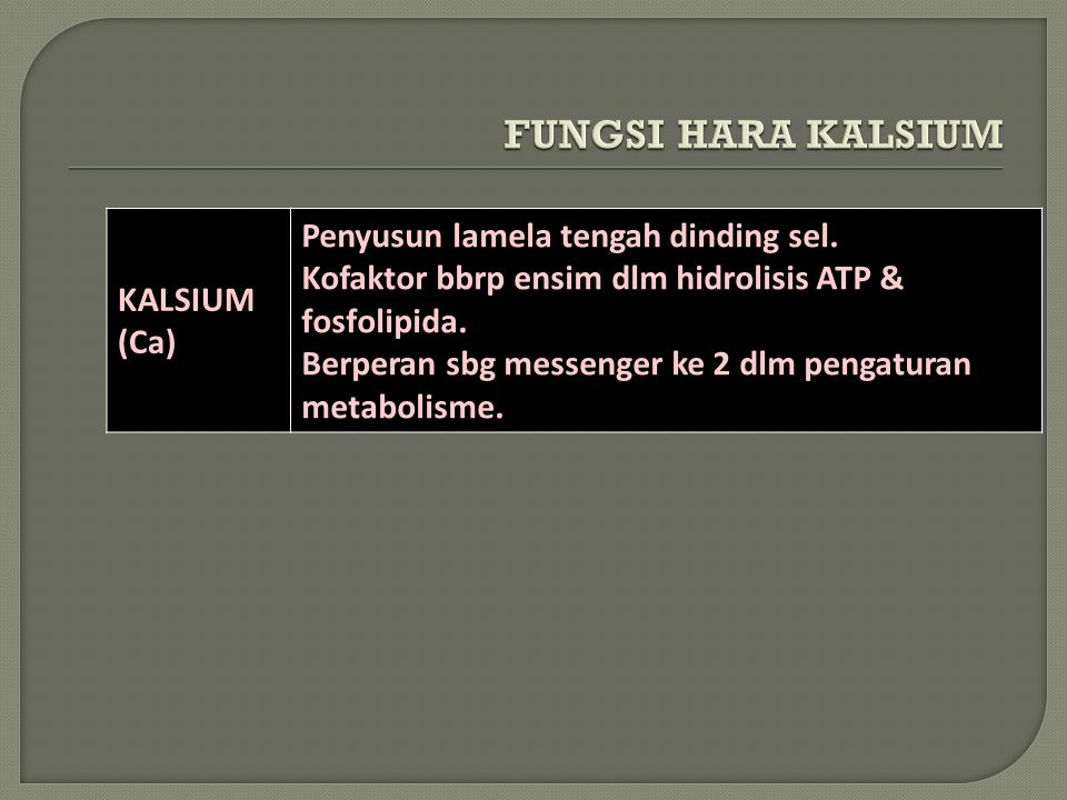 FUNGSI HARA KALSIUM KALSIUM (Ca) Penyusun lamela tengah dinding sel.
