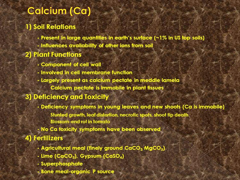 1) Soil Relations Calcium (Ca)