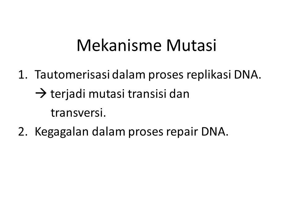 Mekanisme Mutasi Tautomerisasi dalam proses replikasi DNA.