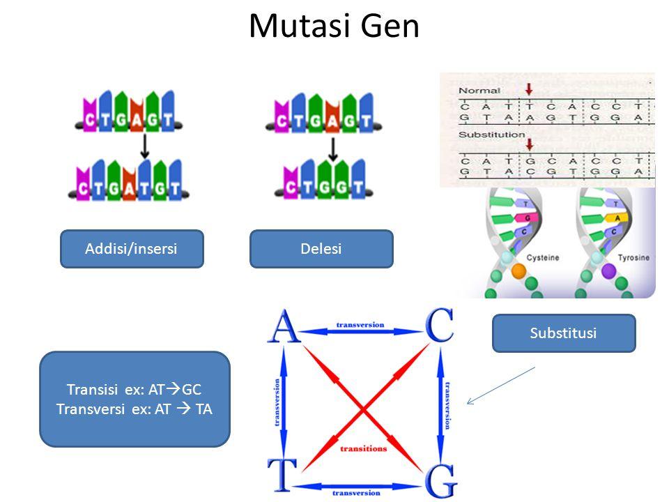Mutasi Gen Addisi/insersi Delesi Substitusi Transisi ex: ATGC