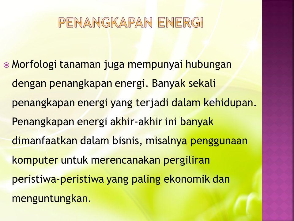 PENANGKAPAN ENERGI