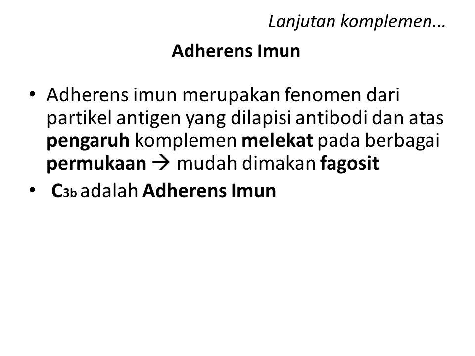 C3b adalah Adherens Imun