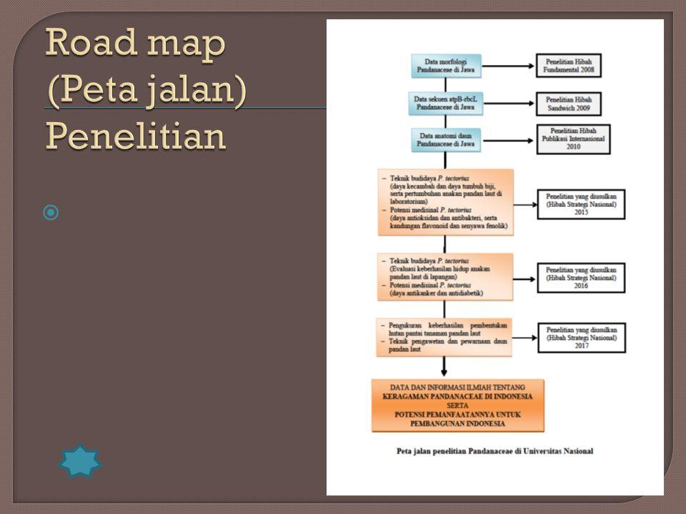 Road map (Peta jalan) Penelitian