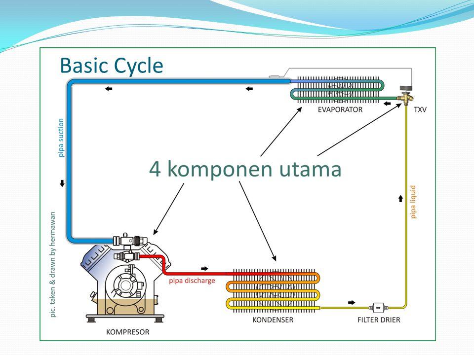 Basic Cycle