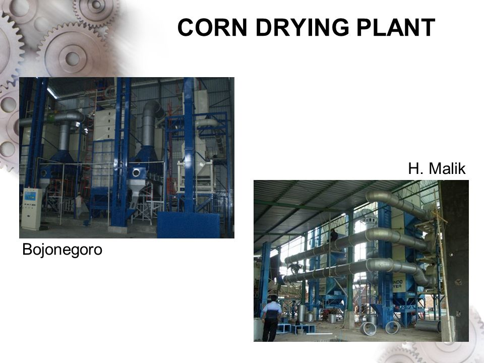 CORN DRYING PLANT H. Malik Bojonegoro