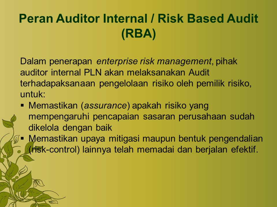 Peran Auditor Internal / Risk Based Audit (RBA)