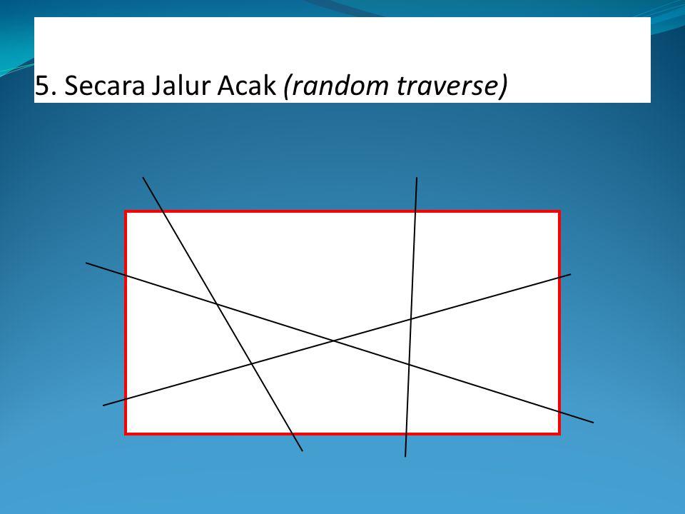 5. Secara Jalur Acak (random traverse)