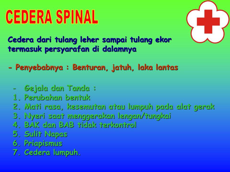 CEDERA SPINAL Cedera dari tulang leher sampai tulang ekor