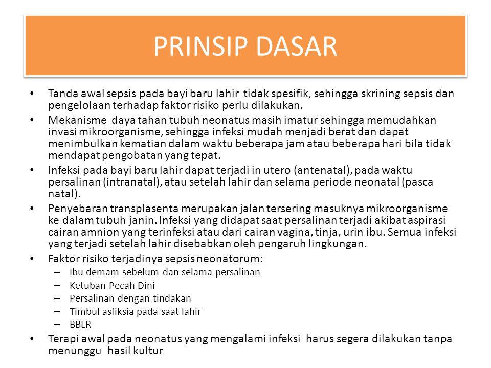 PRINSIP DASAR
